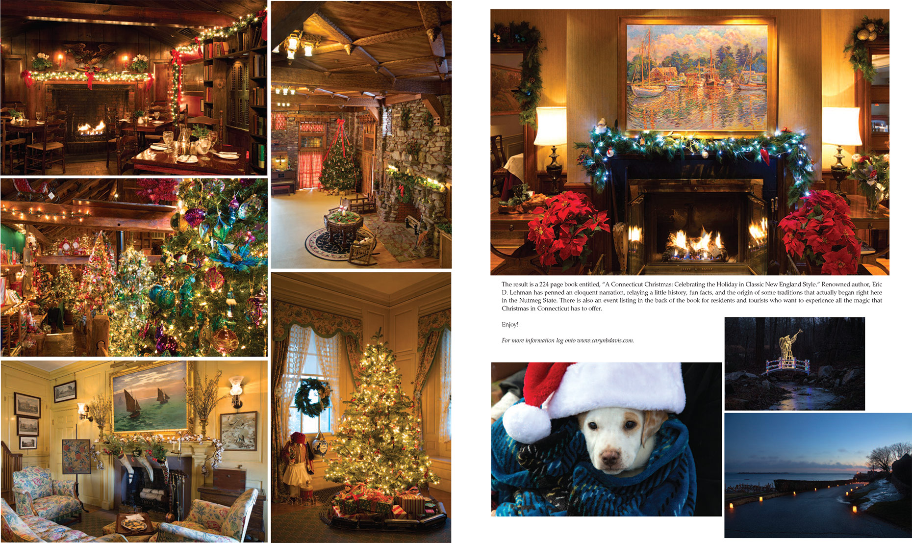 Ink-Publication-A-Connecticut-Christmas-Caryn-B-Davis